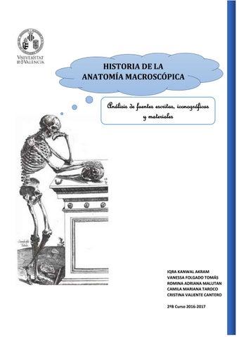 Anatomía macroscópica by Las coronarias - issuu
