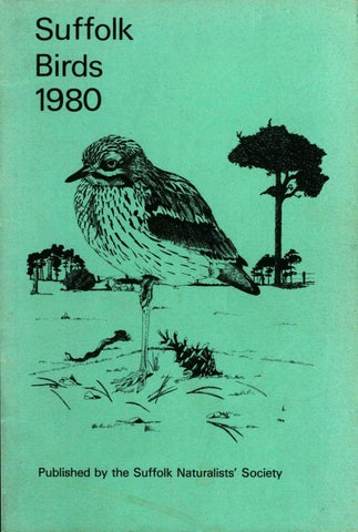 Suffolk Birds 1980 by Suffolk Naturalists' Society - issuu