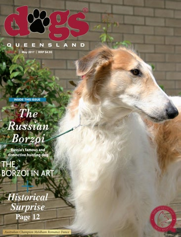 Dogs queensland the queensland dog world issue 3 march 2017 dogs queensland the queensland dog world issue 5 may 2017 solutioingenieria Gallery