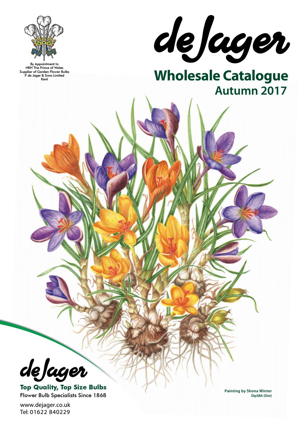 De Jager Bulbs Wholesale Catalogue Spring 2017 By Emma Simpson Issuu
