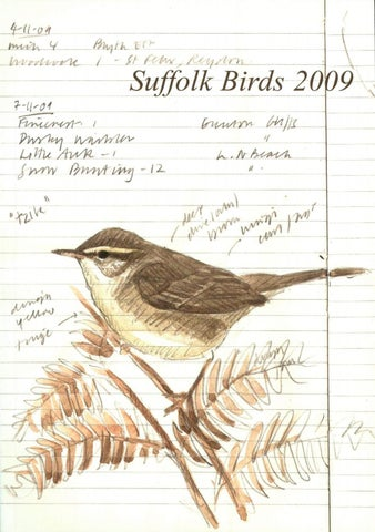 Suffolk Birds 2009 Part 1 By Naturalists Society