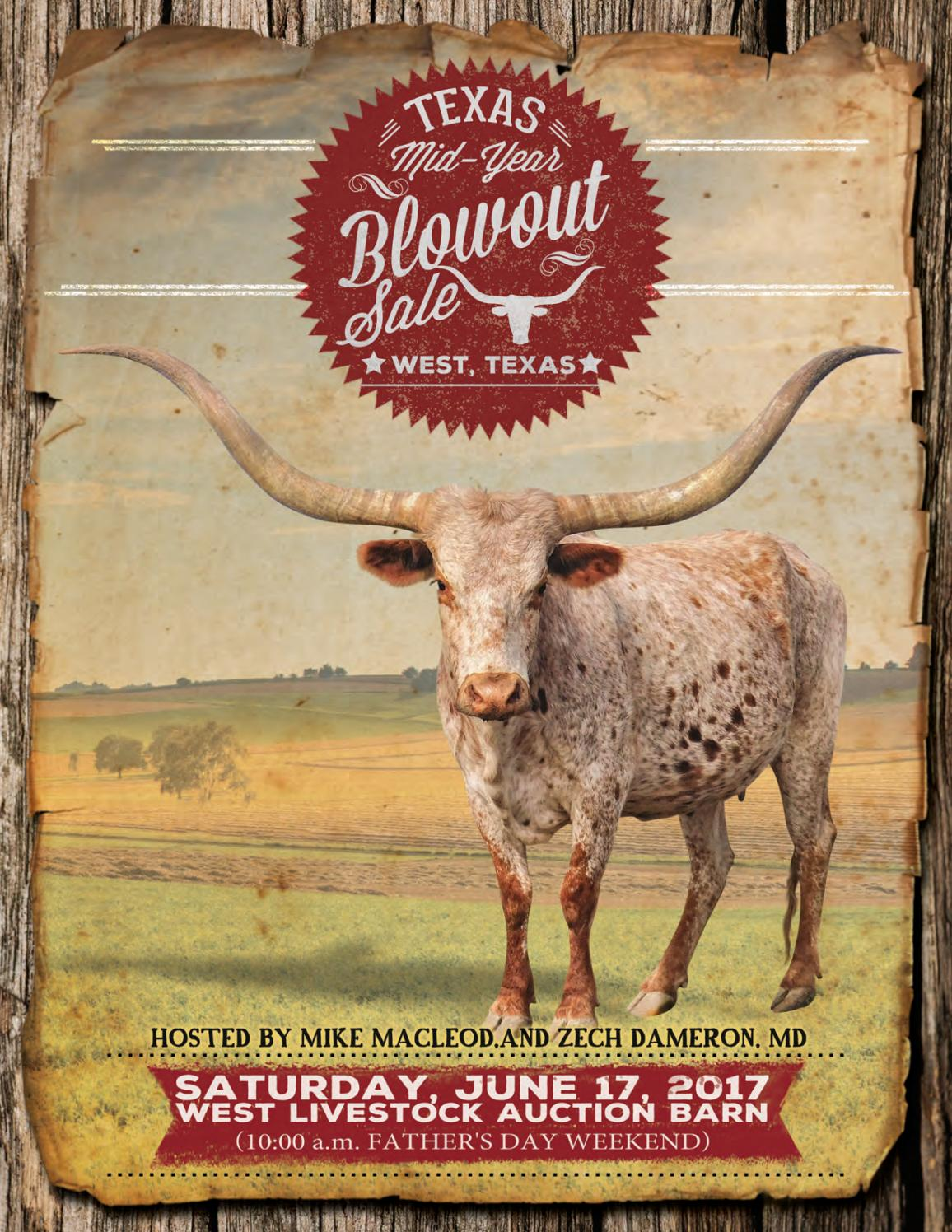 2017 red river longhorn sale catalog by texas longhorn trails