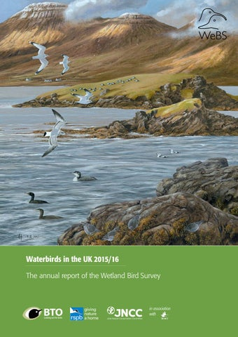 Waterbirds in the UK 2015/16 by British Trust for Ornithology - issuu