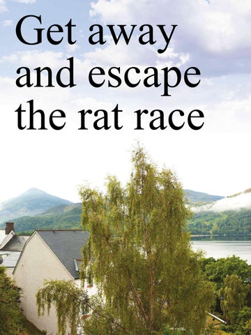 Page 40 of Get away and escape the rat race