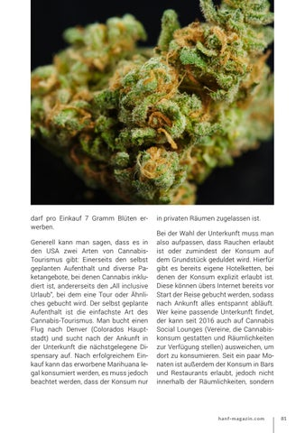 Page 81 of Cannabis-Tourismus - Teil 1