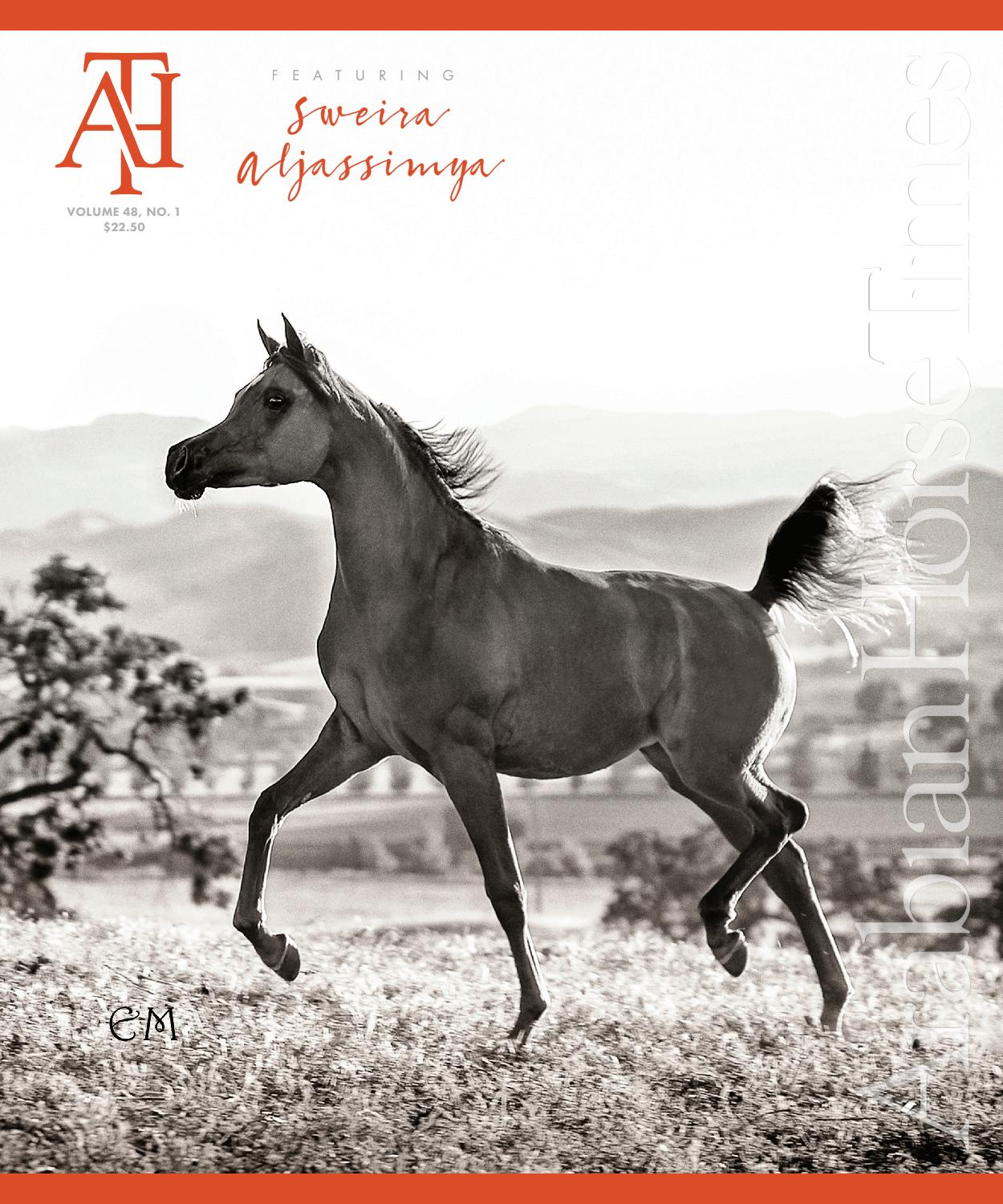 Arabian Horse Times Vol 48 No 1 By Arabian Horse Times Issuu