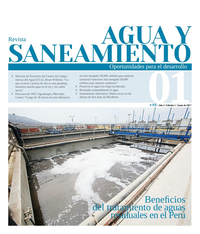 Revista Agua Y Saneamiento Ed 1 Lima Per 250 By