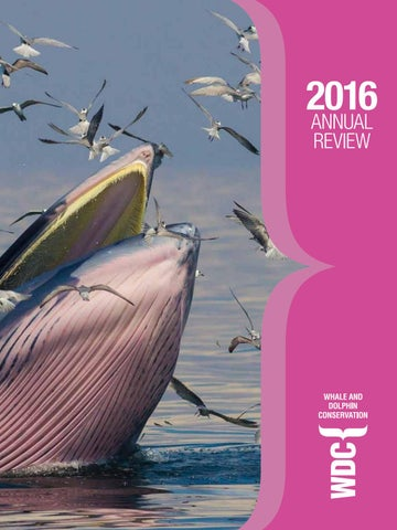 WDC Annual Review 2016 by Think Publishing - issuu