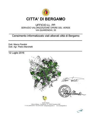 Un censimento per gli 8688 alberi dei viali di bergamo by - Alberi adatti per viali ...