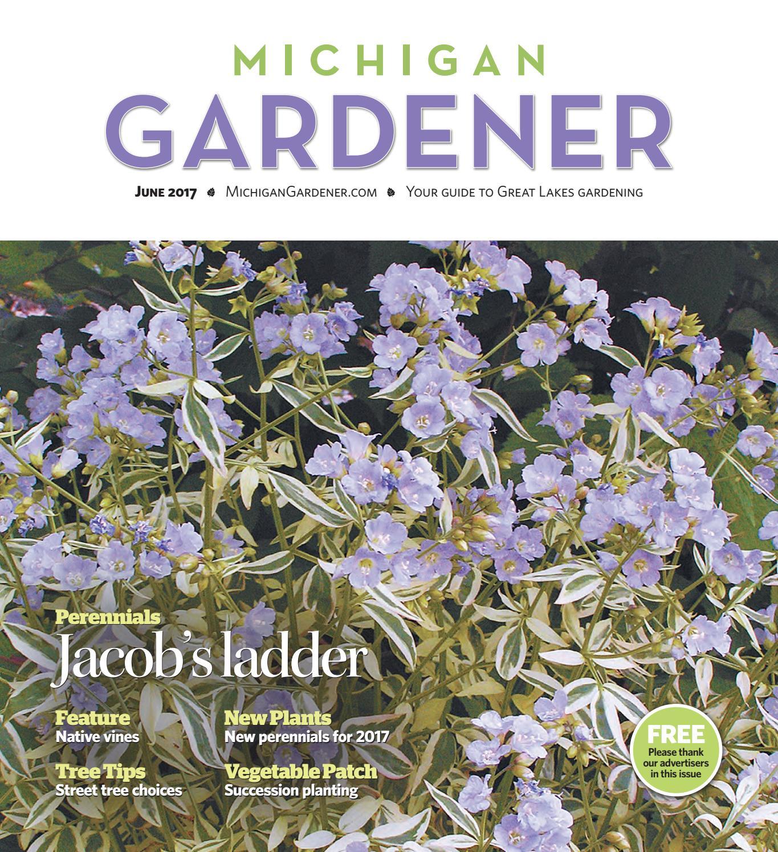 327a17f4539 June 2017 by Michigan Gardener - issuu