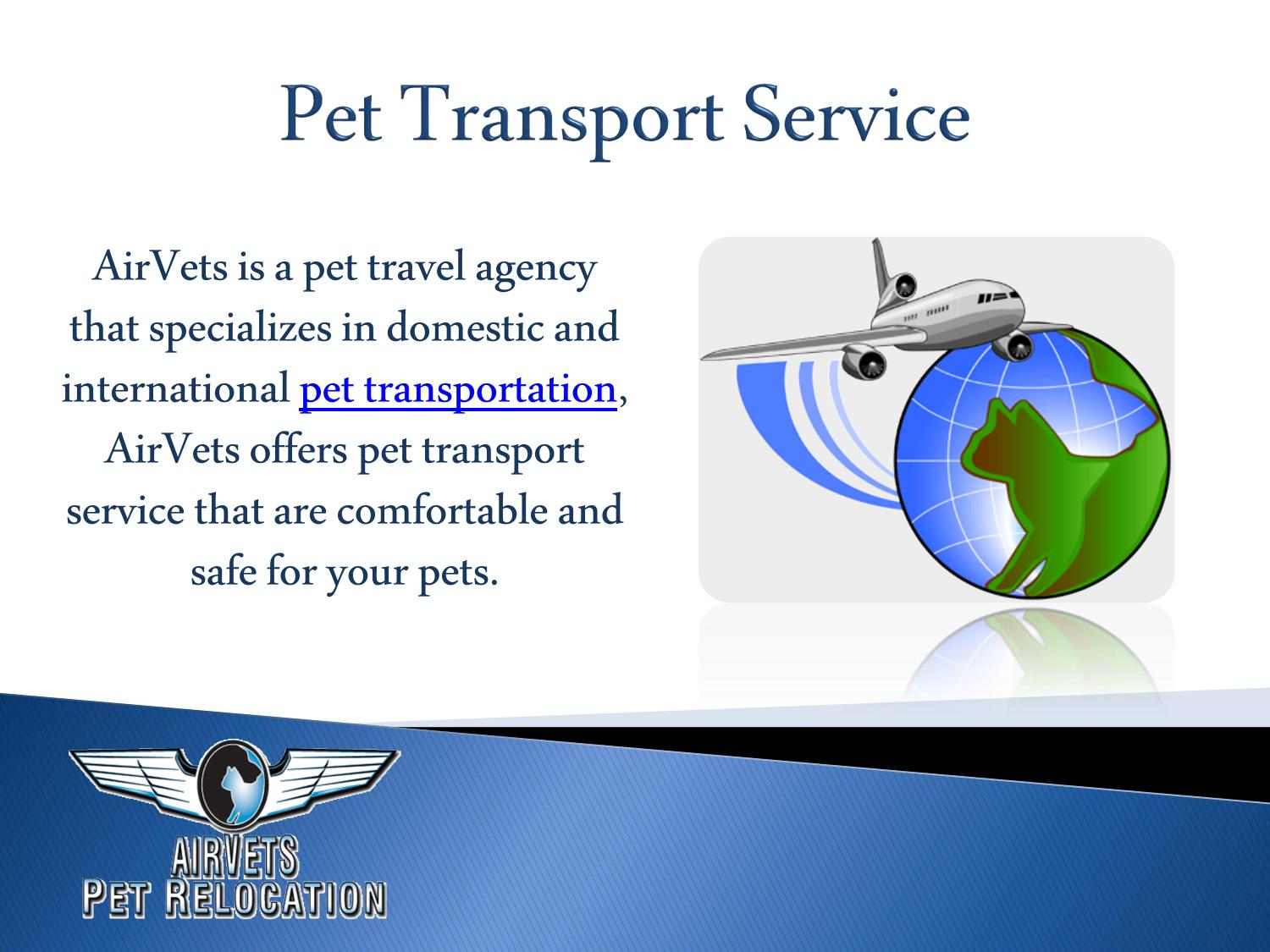 Pet Transport Service By Airvets Issuu