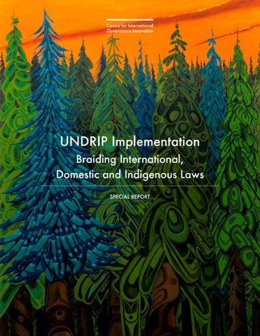 a9d554d4002 UNDRIP Implementation  Braiding International