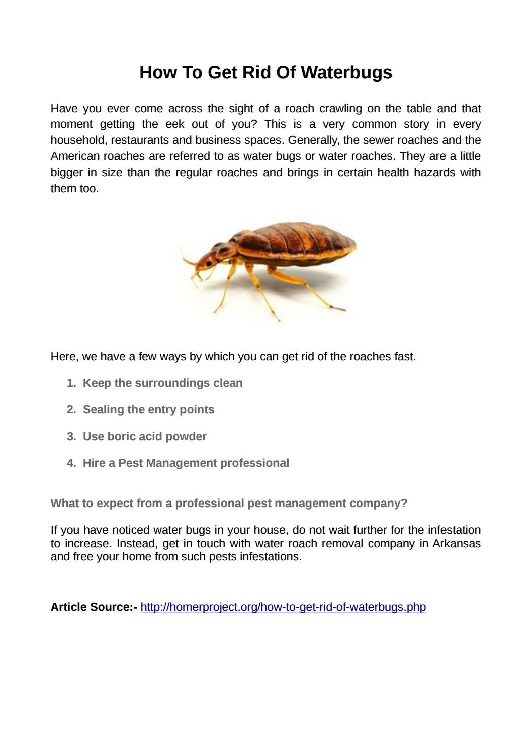 How To Get Rid Of Waterbugs By Bug Pro Llc Issuu