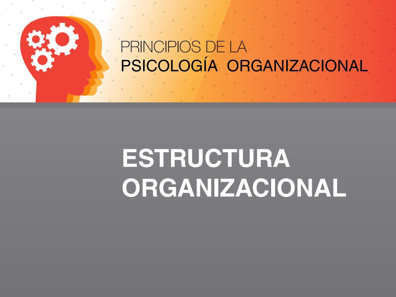 Estructura Organizacional By Universidad De Las Américas Issuu