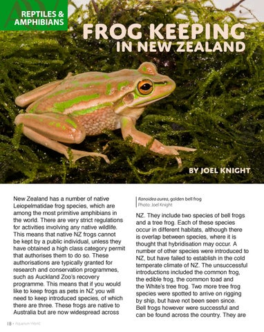 Page 18 of Exotic Amphibians found in New Zealand.