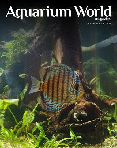 Tropical Fish Magazine Pdf