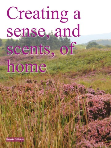 Page 36 of Creating a sense, and scents, of home