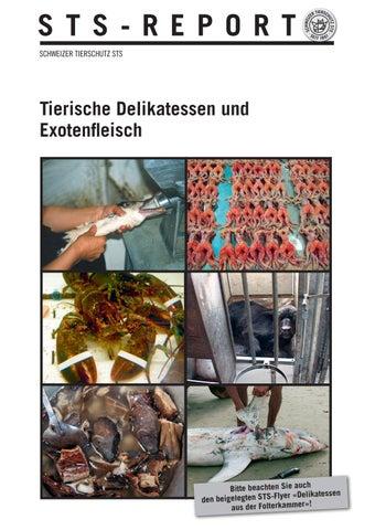 QualitäT Genossenschaft Terrarium Für Meerschweinchen Oder Mäuse Etc üBerlegene In