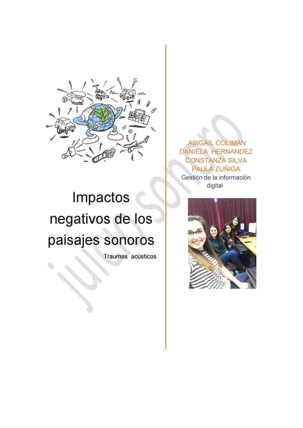 Efectos de los paisajes sonoros by paula zu iga issuu - Tipos de paisajes ...