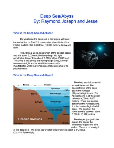 Deep sea ecosystem book by joseph lin issuu deep seaabyss by raymondjoseph and jesse what is the deep sea and abyss did you know the deep sea is the largest yet least known habitat on earth publicscrutiny Gallery