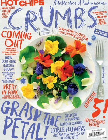 Crumbs Devon - Issue 17 by MediaClash - issuu