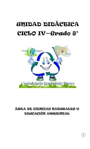 Unidad Didactica Grado 8 Primer Trimestre 1 By Albita22