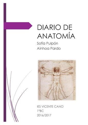 Diario de anatomia by Sofia Pulpon Carrasco - issuu