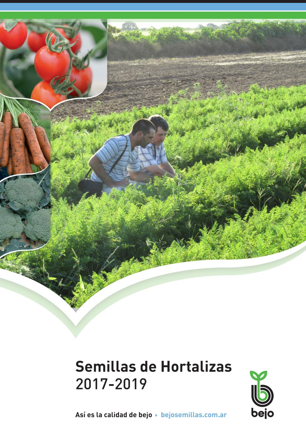 Bejo Semillas De Hortalizas By Bejo Zaden Issuu This disease was first recorded in india in 1972, and later in brazil in 1998, where its distribution is currently restricted to the. semillas de hortalizas by bejo zaden