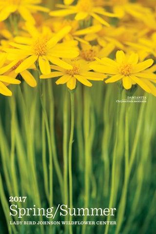 2017 Springsummer Guide By Lady Bird Johnson Wildflower Center Issuu