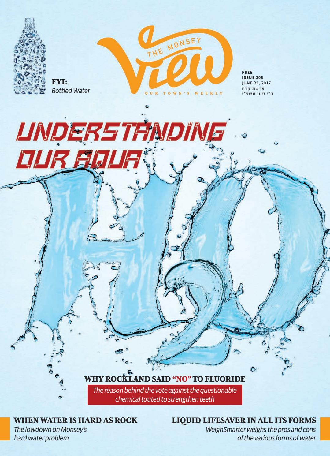 Issue 103 by The Monsey View - issuu