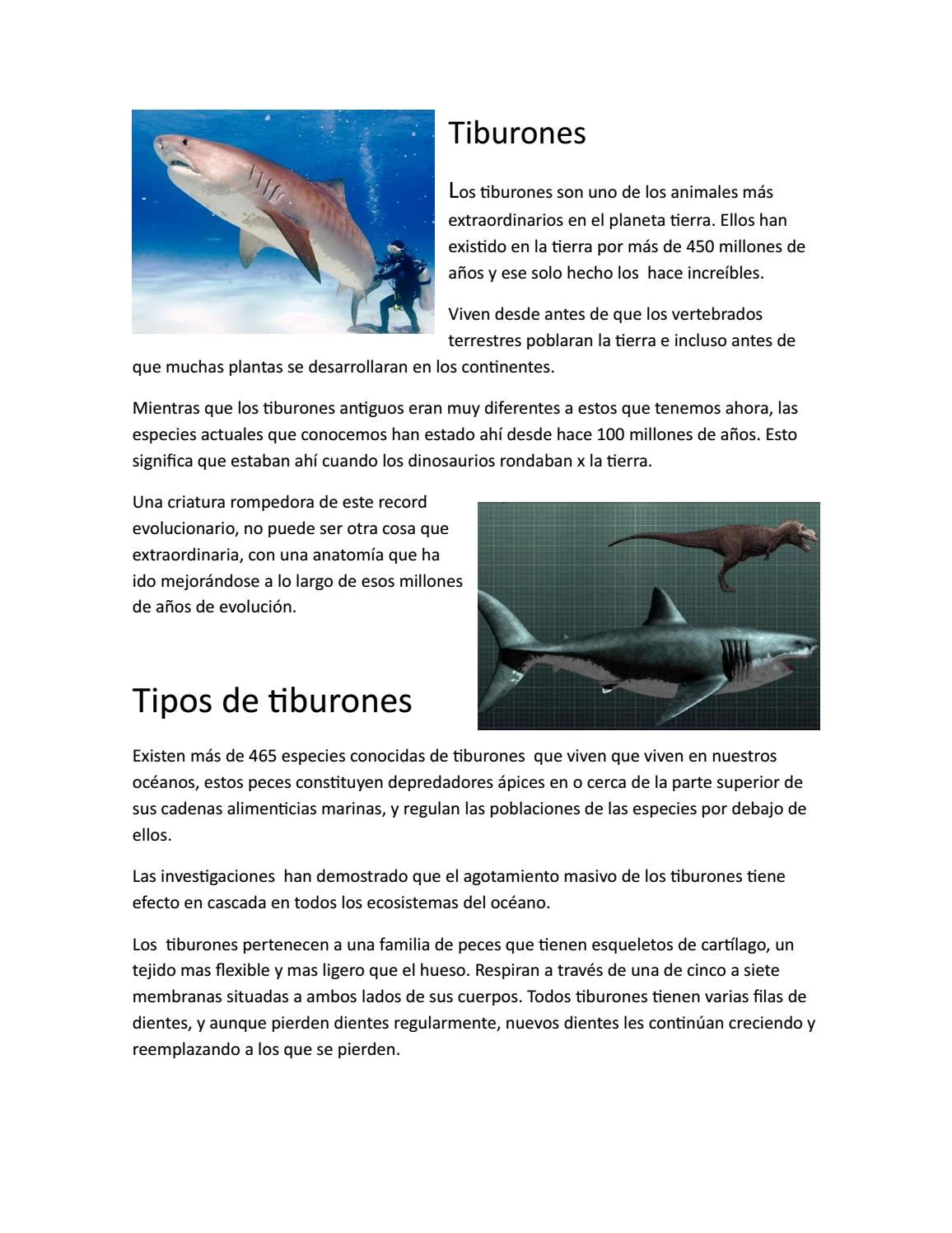 Tiburones by Qngel - issuu