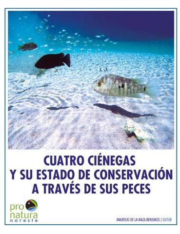 Cuatro ci negas y su estado de conservaci n a trav s de for Vivero para peces