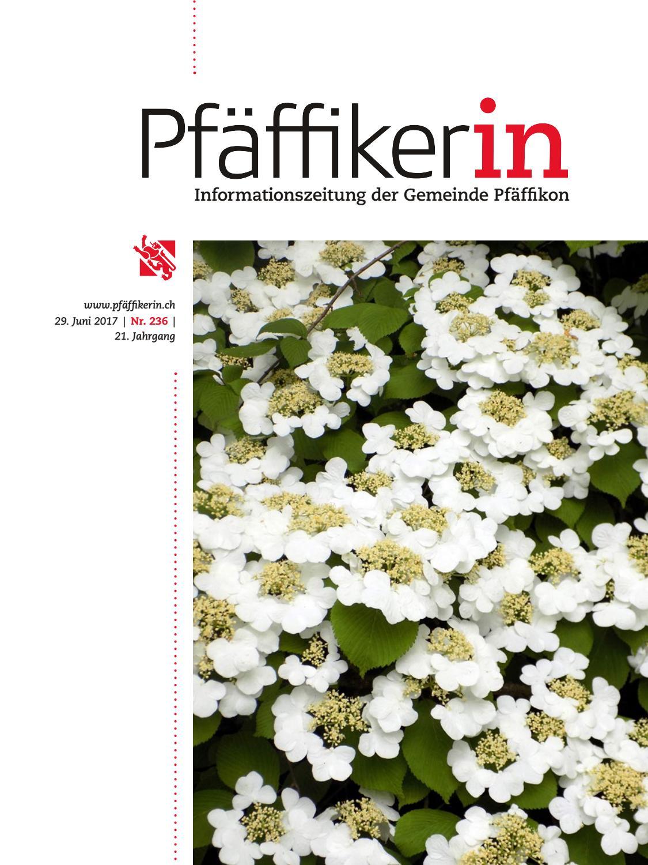 Jahresbericht 2018 - Lindenbaum Ausbildung und Wohnen