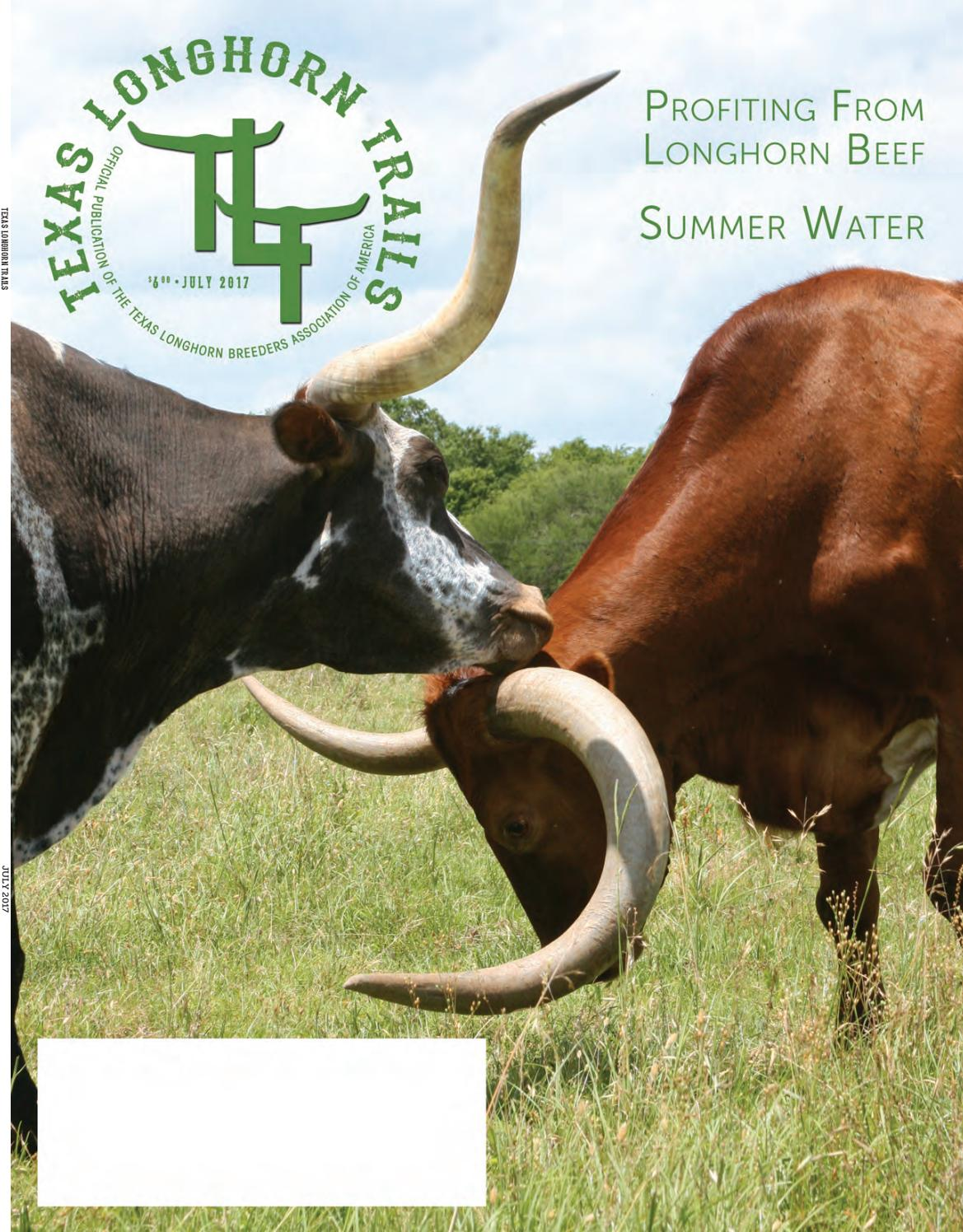 "5/' 0/"" TIP TO TIP COW BULL HORNS LONGHORNS MOUNTED STEER HORNS 4/'6/"" 1 SET"
