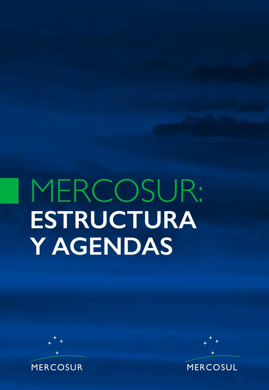 Mercosur Estructura Y Agendas By Lateral Diseño Issuu