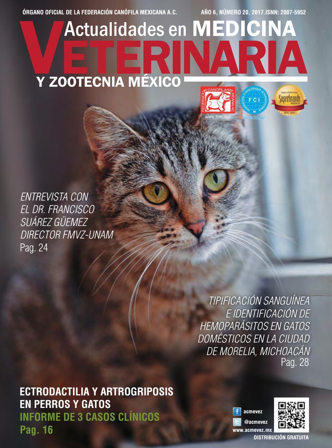 Revista Actualidades en Medicina Veterinaria y Zootecnia México No ...