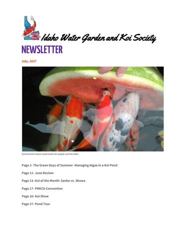 Provided Cloverleaf Blanket Answer 200 G Fish & Aquariums