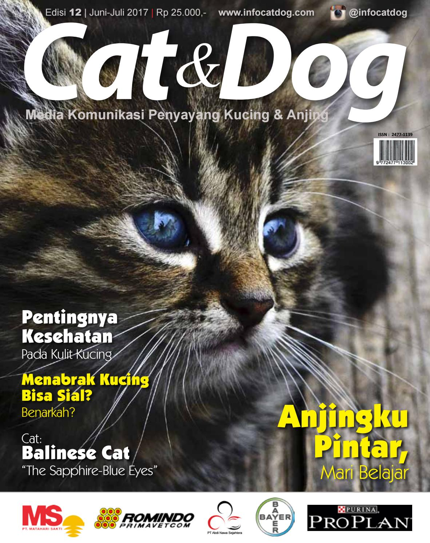 Majalah Cat Dog Edisi Juni Juli 2017 By Bambang Suharno Issuu