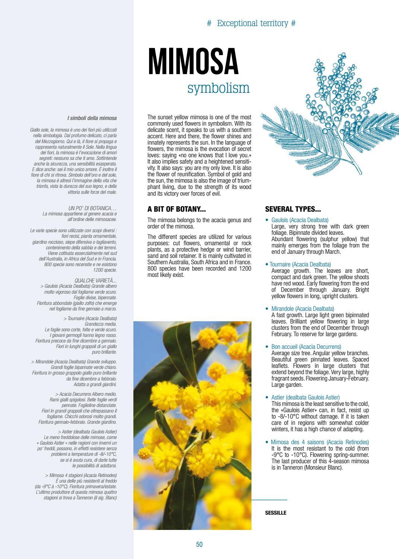Fiori Da Giardino Roccioso magazine destination 2017 (uk-de) by office de tourisme de
