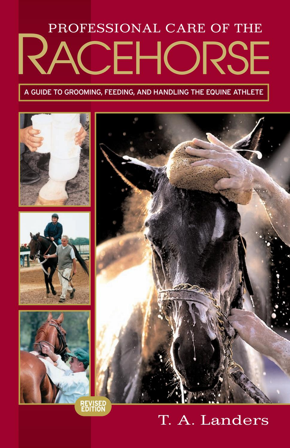 25 Professional Care Of The Racehorse A Guide To Grooming