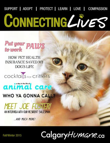 Connecting Lives - F/W 2015 by Calgary Humane Society - issuu