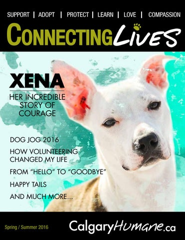 Connecting Lives S/S 2016 by Calgary Humane Society - issuu