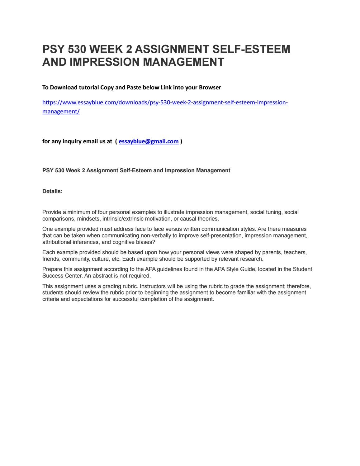 impression management essay
