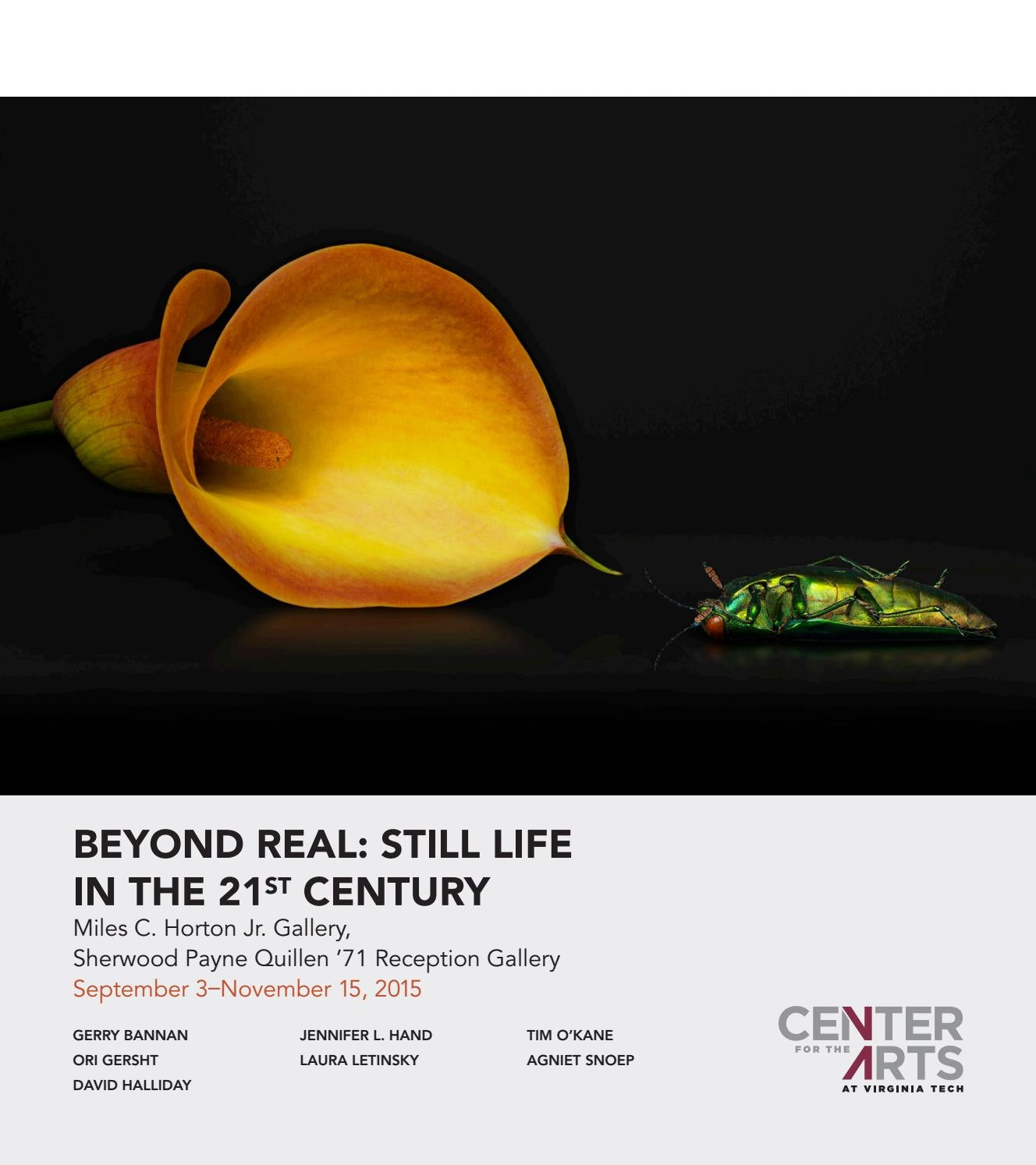 Beyond Real: Still Life in the 21st Century by Moss Arts