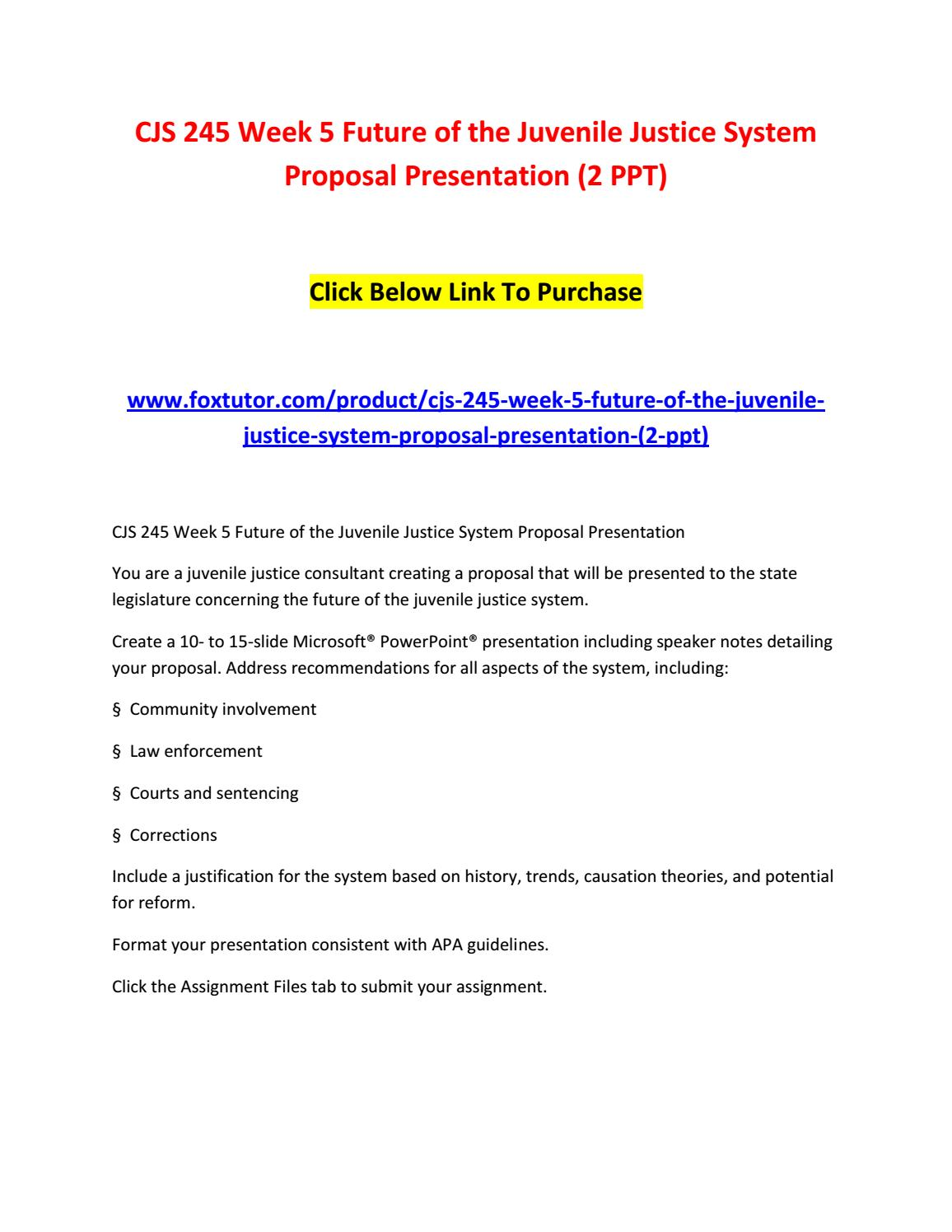 Essay on Future of the Juvenile Justice System Proposal
