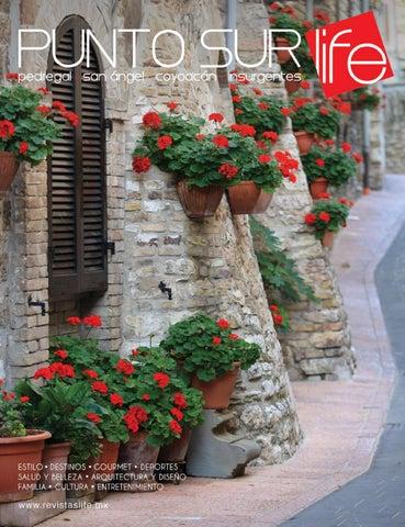 c98c9f7a4 Punto Sur Verano 2017 by Revistas Life - issuu