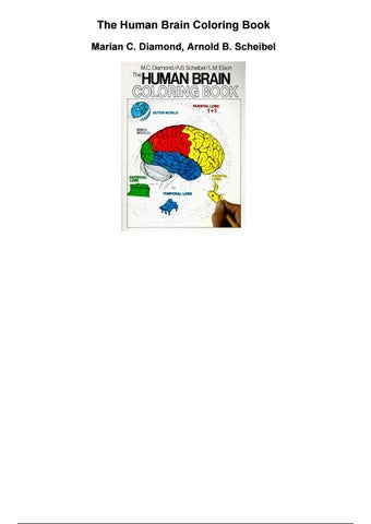The Human Brain Coloring Book Marian C Diamond Arnold B Scheibel