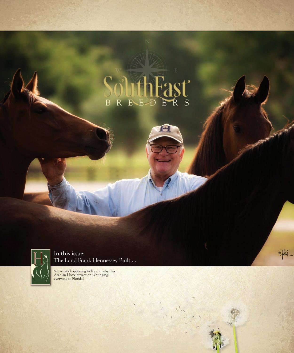 Arabians Of The Southeast Published In Arabian Horse Times By Arabian Horse Times Issuu