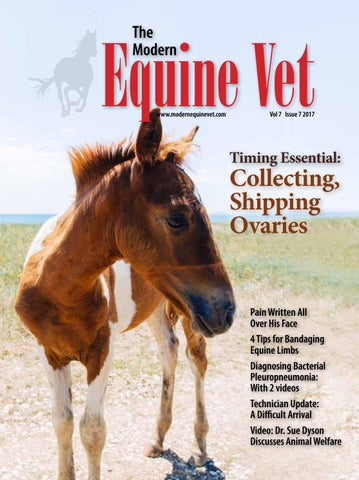 The Modern Equine Vet July 2017 by The Modern Equine Vet - issuu