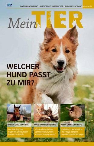 Ausgabe Mein Tier 2016 By Neue Osnabruecker Zeitung Issuu